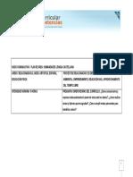 INDICADORES SER.pdf