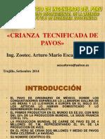 CRIANZA DE PAVOS.pdf