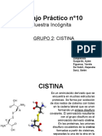 cisteina_tp_1000000.ppt