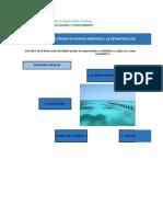 Como Elaborar Una Estrategia de Oceano Azul