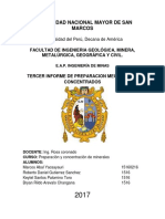 Informe de Prepa Grupal Analisis Granos