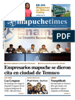 Mapuche Times 1