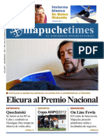 Mapuche Times 6