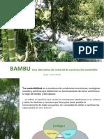 bambualternativadematerialdeconstruccinsostenible-160417215516