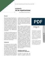 Identidad en Las Organizaciones
