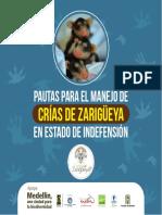 2016. Vivas-Serna, C., Flórez-Oliveros, F.J. & Castrillón, J. Pautas para el manejo de crías de zarigüeya en estado de indefensión. FUNDZAR