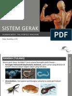 Human Body (Materi Sistem Gerak)