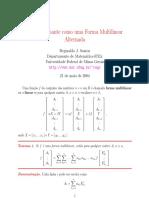 O determinante como uma forma multilinear alternada.pdf