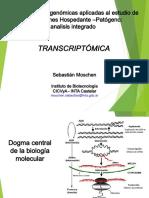 Transcriptomica- Fitopatologia Molecular 2016