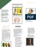 EL Alzheimer.docx