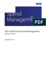 Cc Visa Intellilink Detailed Approver Guide