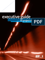 pmi executive guide.pdf