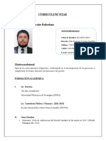 modelo Curriculum Vitae ejecutivo