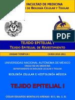 Epitelial_1_revest.pdf