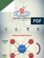 8 Sistema de gano excel.ppsx
