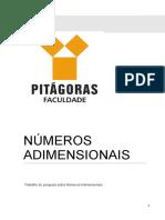 Faculdade Pitágoras - Números Adimensionais