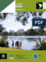PAVS Resumo GeoSaude Executivo