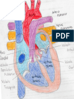 PDF012