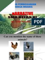 Narrative-why Do Hawks Hunt Chicks
