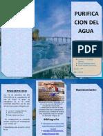 Purificacion Del Agua