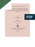 Fabio- Tesis Doctoral