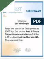 Joyce Bezerra Grangeiro.pdf