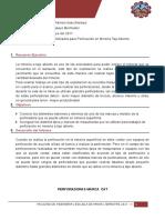 INFORME DE TAJO ABIERTO 01.docx