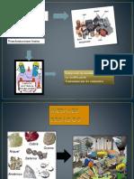 Transformaciones Del Hierro Ecologia Microbiana