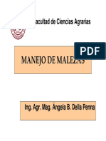 manejointegradodemalezasabreviado-120918030001-phpapp01