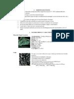 Proceso de Hidrometalurgia y Pirometalurgia