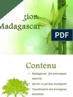 Ecoregion Madagascar
