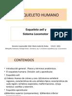 18-08-15 EL ESQUELETO AXIL Y MUSCULOS ACTUALIZADA.pptx