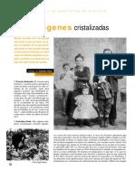 imagenes-cristalizadas-patricia-redondo.pdf