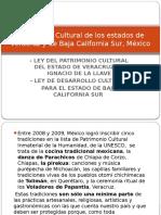 Pat Cult Veracruz  Baja California Sur