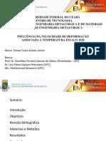 TCC-Slides-Tomaz.pdf