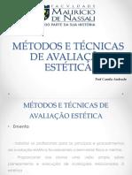 Aula 1 Plano de Ensino AVALIAÇÃO ESTÉTICA