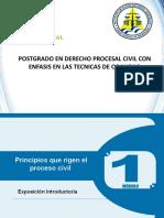 1Tema 5 Principios Del CPCN