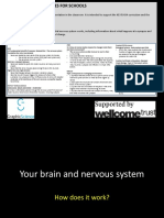 How your brain and nervous system works.pptx