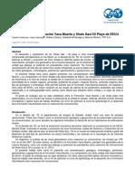 Analogía Fm Vaca Muerta_Askenazi.pdf