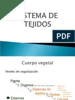 Estructuras_Vegetales