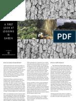Gab a First Look at Logging in Gabon