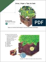 Suelos. Lec 6.pdf