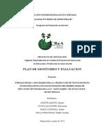PLAN DE MONITOREO.doc