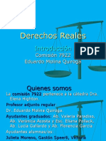 Reales Introduccion 2010