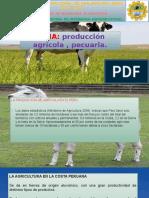 ecologia produccion pecuria.pptx