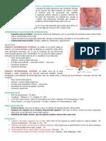 Cirugia Hemorroides