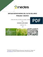 arroz-peru.pdf