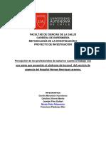 Proyecto de Investigación_Grupo10 (1)