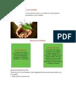 Texto Fundamento de Economia Ingeniero