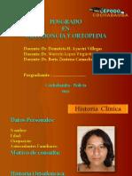 Formato de Presentacion (2)